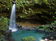 Dominica-Erforschungen Stockfotos