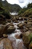 Dominica-Erforschungen Stockfoto