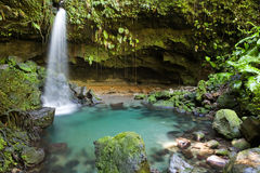 Free Dominica Explorations Stock Image - 4587151