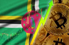 Dominica flag and cryptocurrency growing trend with many golden bitcoins. Dominica flag  and cryptocurrency growing trend with many golden bitcoins. Concept of royalty free stock image