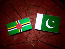 Dominica flag with Pakistan flag on a tree stump isolated. Dominica flag with Pakistan flag on a tree stump vector illustration