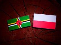 Dominica flag with Polish flag on a tree stump isolated. Dominica flag with Polish flag on a tree stump vector illustration