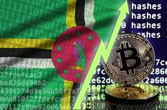 Dominica flag and rising green arrow on bitcoin mining screen and two physical golden bitcoins. Concept of high conversion in cryptocurrency mining royalty free stock image