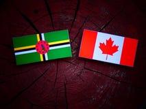 Dominica flaga z kanadyjczyk flaga na drzewnym fiszorku odizolowywającym zdjęcie royalty free