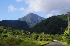 Dominica island, Lesser Antilles. The scenic road to mountains on Dominica island, Lesser Antilles royalty free stock image