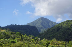 Dominica island, Lesser Antilles. The scenic road to mountains on Dominica island, Lesser Antilles stock image