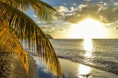 Dominica Island Sunset en silhouette sur la plage photos stock