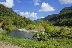 Dominica, karibisch stockfotografie