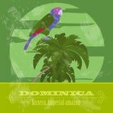 Dominica krajowi symbole Sisseru papuga, Cesarski Amazon Retr ilustracja wektor