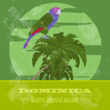 Dominica national symbols. Sisseru parrot, Imperial amazon. Retr Royalty Free Stock Photo