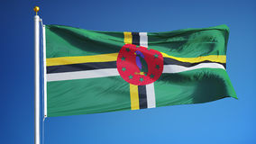 Dominica vlag in langzame motie voorzag foutloos met alpha- van een lus stock video