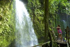 Dominica waterfall. A young girl watching Soltan waterfall in Dominica stock photo