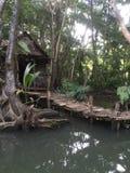 Dominica woda Ustawiająca dla piratów Karaiby obraz stock