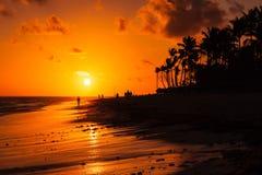 Dominicaanse republiek, het strand van Punta Cana Stock Afbeeldingen