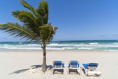 Dominican beach Stock Photography
