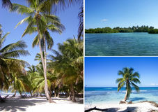 Dominican collage Royalty Free Stock Photography
