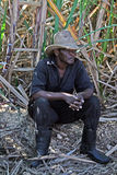Dominican farmer. The portrait of a farmer in asugarcane field of dominican republic Royalty Free Stock Photos