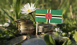 Dominican flag with stack of money coins with grass Royalty Free Stock Image