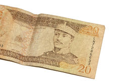Dominican Pesos Stock Photography