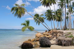 Dominican republic, beach Royalty Free Stock Photo