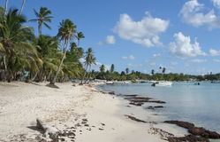 Dominican Republic beach scenery Royalty Free Stock Photography