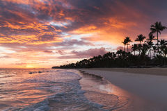 Dominican Republic, coastal landscape. Colorful tropical sunrise over Atlantic Ocean coast, Bavaro beach, Hispaniola Island. Dominican Republic, coastal Stock Photos