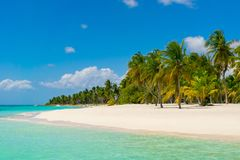 Dominican Republic Dream Beach. Paradise Royalty Free Stock Photography