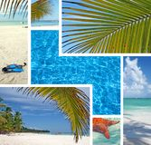 Dominican Republic Island Saona Stock Image