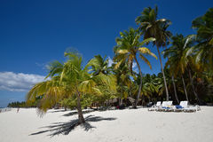 Dominican Republic, Saona Island Royalty Free Stock Photo