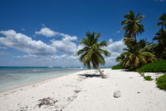 Dominican Republic, Saona Island Stock Photography