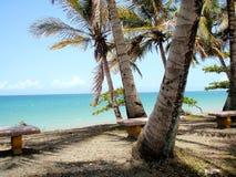 Dominican Republic. Vacation trip island Stock Photos