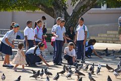 Dominican school children feed pigeons Royalty Free Stock Image