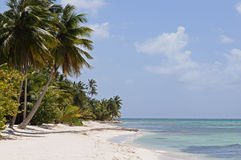 Dominicana beach resort. In the summer Stock Photography