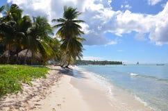 Dominicana Royalty Free Stock Photos