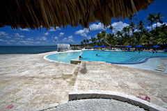 Dominicana pool tree palm  peace marble Royalty Free Stock Images