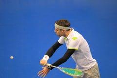 Free Dominik Sacha - Squash Royalty Free Stock Photos - 51375378