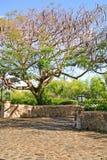 Dominikański miasto krajobraz Obrazy Stock
