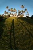 Dominikanische Küste mit Schatten Lizenzfreies Stockbild
