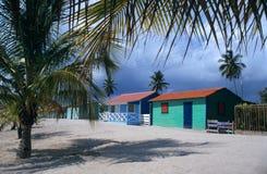 Dominikanische Republik der Saona Inseldorf-Palmen Lizenzfreie Stockfotografie