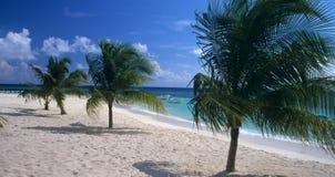 Dominikanische Republik des Saona Inselstrandes Stockfotos