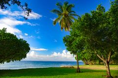 Dominikanische Republik Die grasartige Küste der Insel von Cayo Levan stockfotos