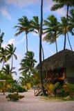 Dominikanischer sandiger Strand mit Hütte Stockbilder