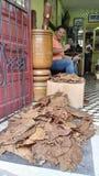 Dominikansk tobak Cigarren shoppar Fotografering för Bildbyråer