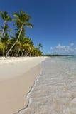 Dominikanska republiken Saona ö Royaltyfria Foton