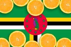 Dominikisk flagga i citrusfruktskivahorisontalram royaltyfri bild