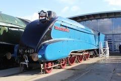 Dominio del tren del vapor A4 de Canadá Imagenes de archivo