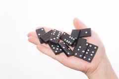Dominos in der weiblichen Hand auf einem weißen Hintergrund Stockbild