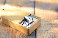 Dominos en bois réglés Image stock