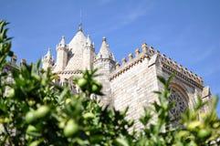 Domkyrka av Evora, Portugal Royaltyfri Fotografi