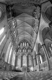 Domkyrka av Exeter, England i svartvitt Royaltyfri Bild